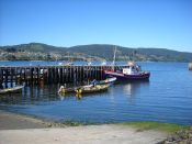Guide of Ancud, CHILE