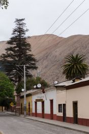 Guide of Valle del Elqui, CHILE