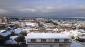 Guide of Punta Arenas, CHILE