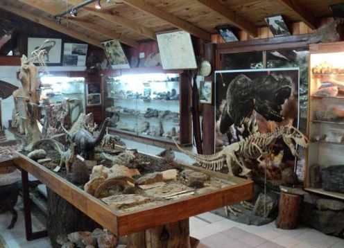 Museum of Geology and Paleontology Dr. Rosendo Pascual