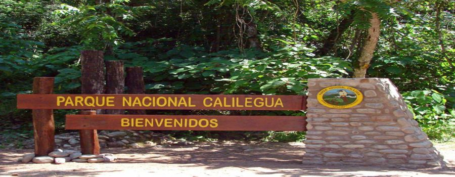 Calilegua National Park