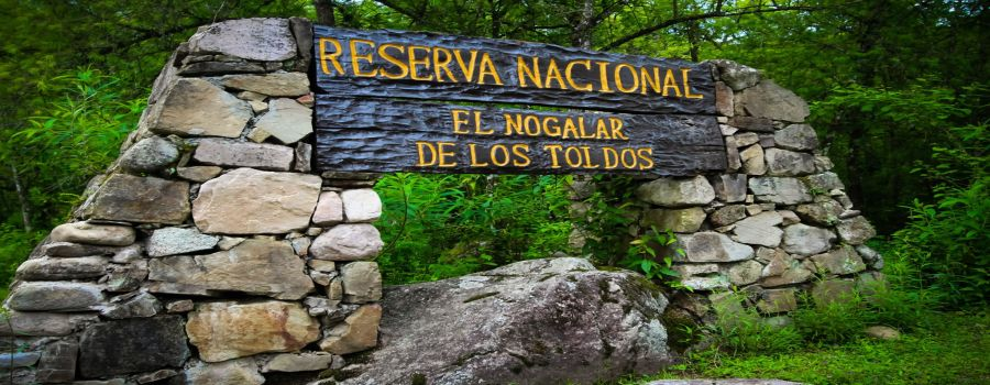 El Nogalar National Reserve of Los Toldos
