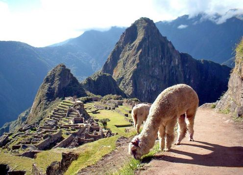 HOLY PILGRIMAGE TO MACHU PICCHU