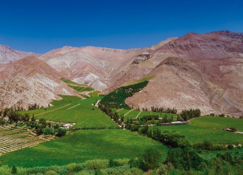 ELQUI VALLEY TOUR