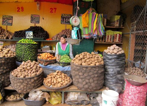 Culinary Day Tour - City Tour + Market + Preparation Ceviche & Pisco Sour + Lunch,