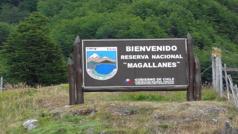 TREKKING IN MAGALLANES RESERVE - Punta Arenas, Chile