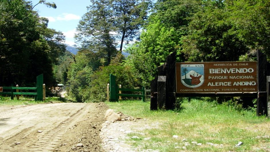 Alerce Andino National Park Tour - Puerto Varas, Chile