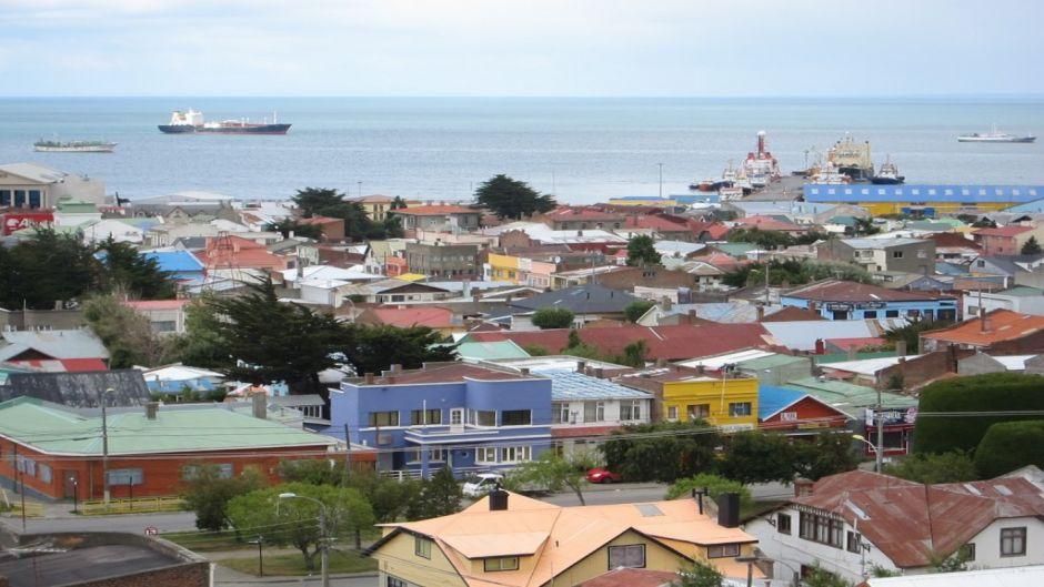 Punta Arenas Wildlife Tour