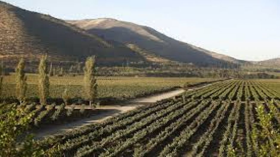 SANTA RITA WINE TOUR - Santiago, Chile