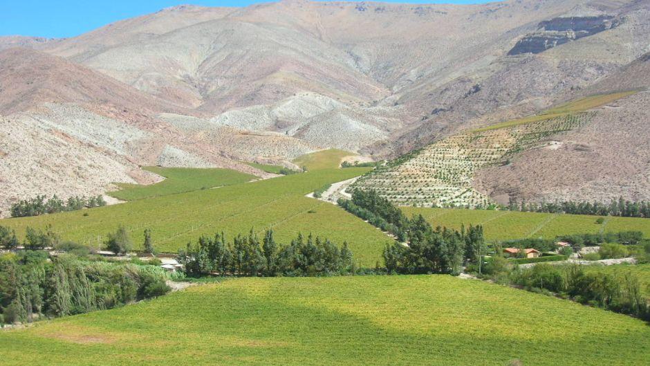 Excursion Al Valle Del Elqui