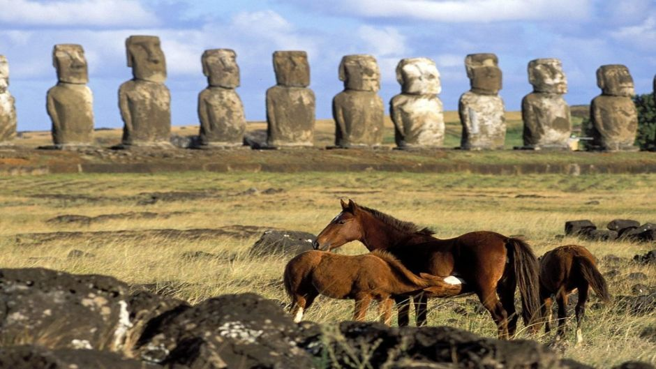 HORSEBACK RIDING EASTER ISLAND - Isla de Pascua, Chile