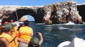 Tour to the Ballestas Islands, Paracas, PERU