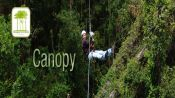 CANOPY - Pucon, Chile