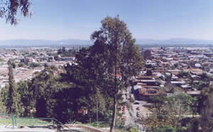 History of Curico