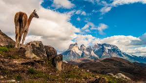 History of Torres del Paine